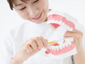 塩釜口駅の歯医者